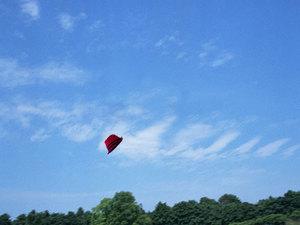 fedora-hat-flying.jpg